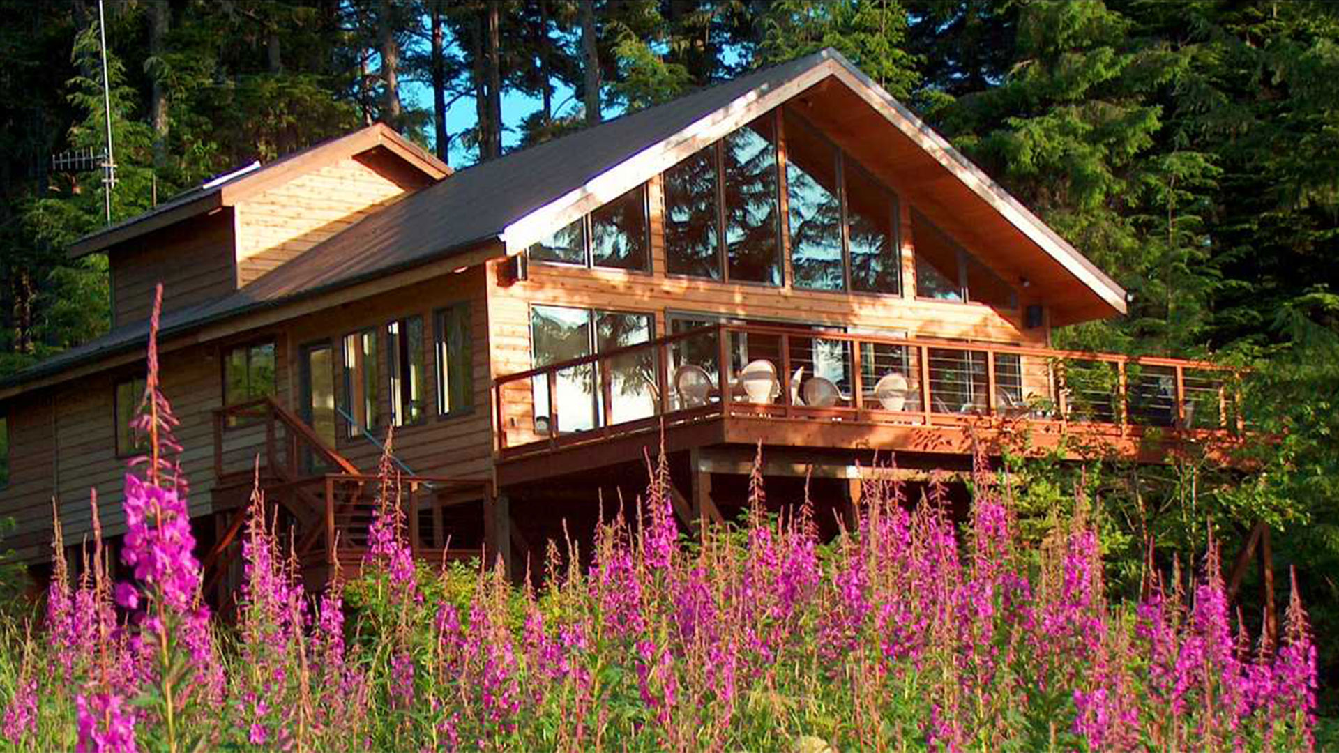 Alaska Fireweed Frames the Main Lodge